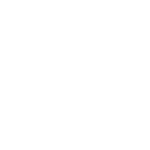 Beer Brothers Logo